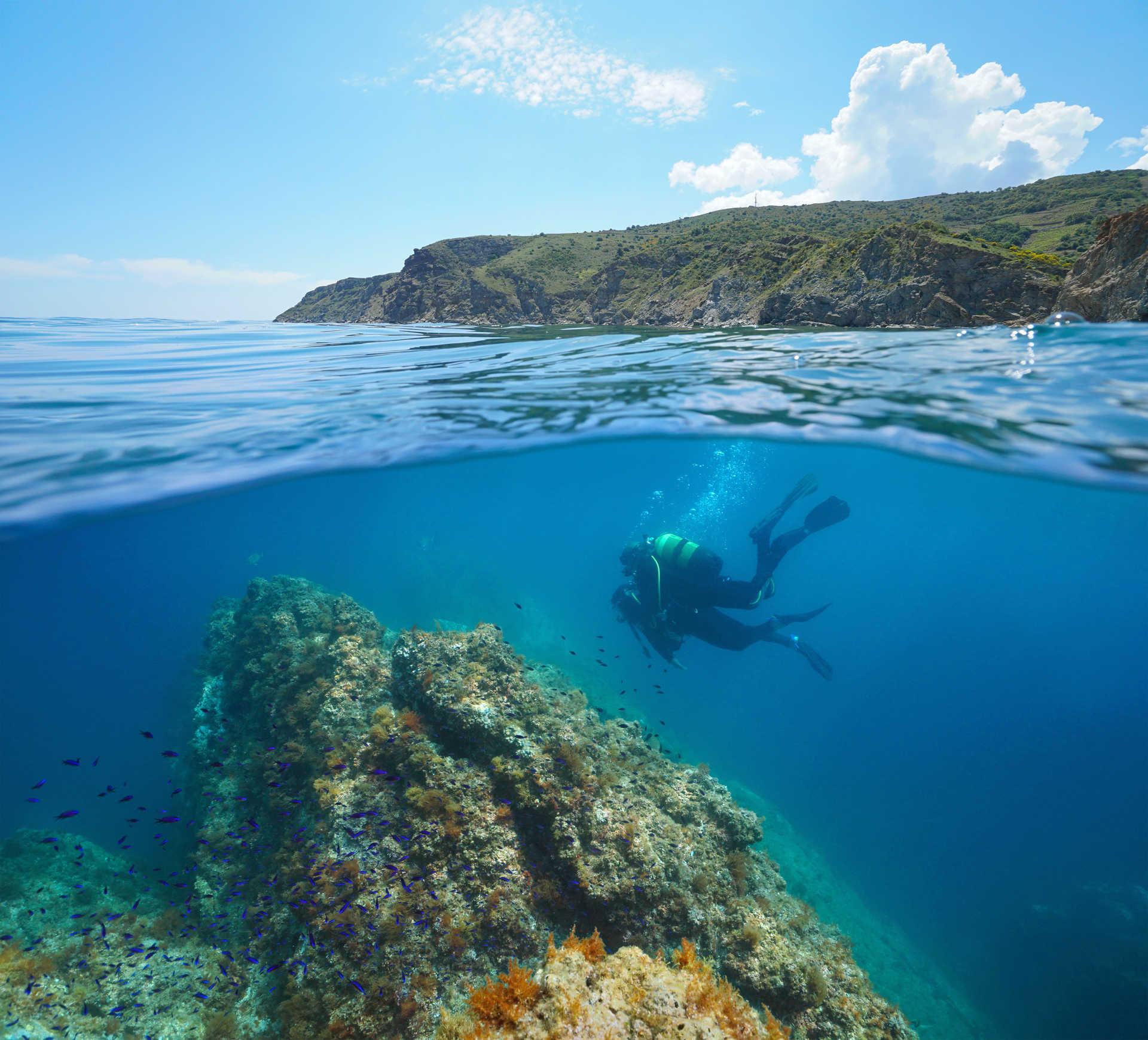 Mi-air mi-eau dans la Méditerranée avec des plongeurs, réserve marine de Cerbère Banyuls