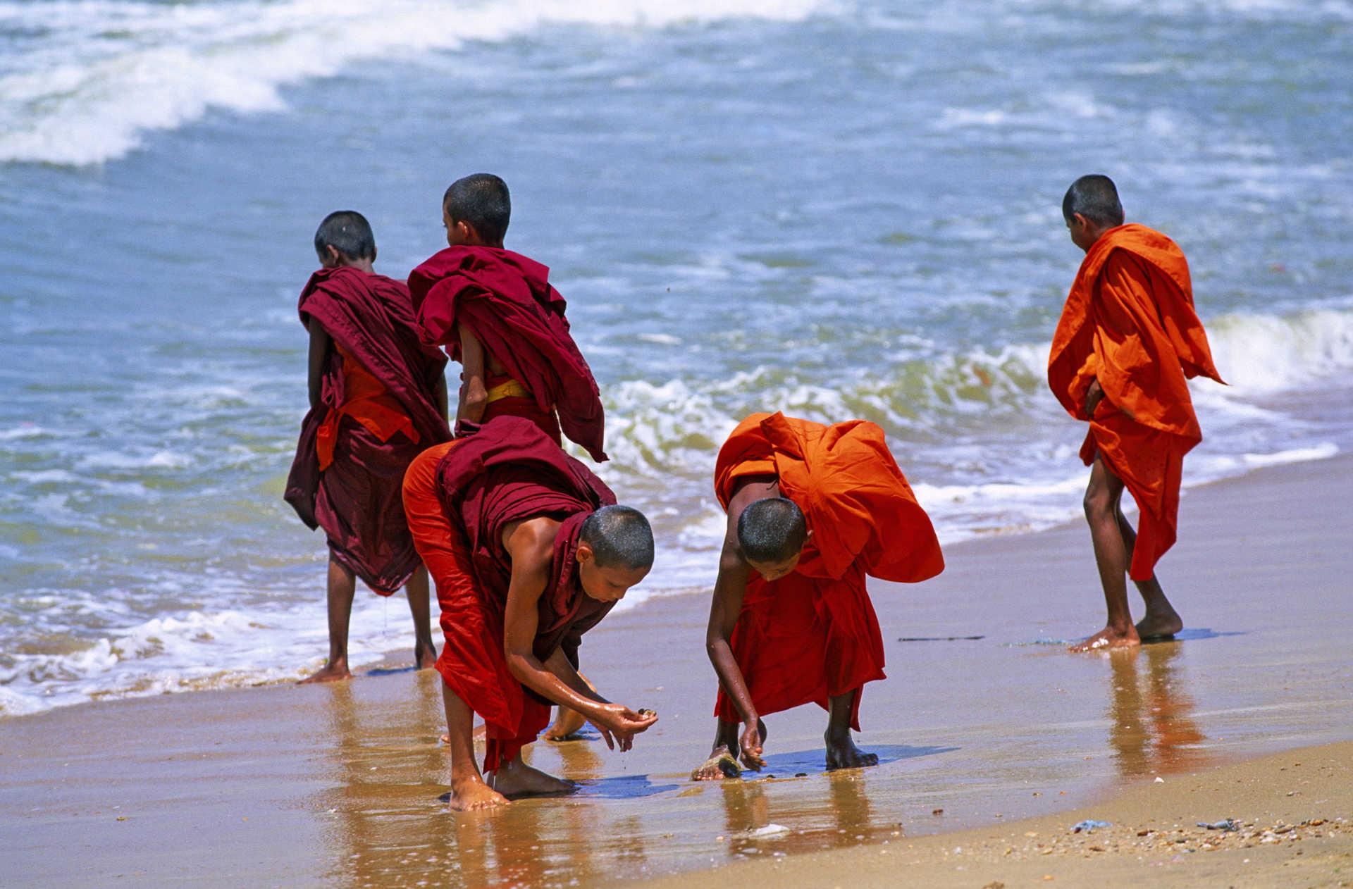 Moines-bouddhistes-sur-une-plage-Sri-Lanka