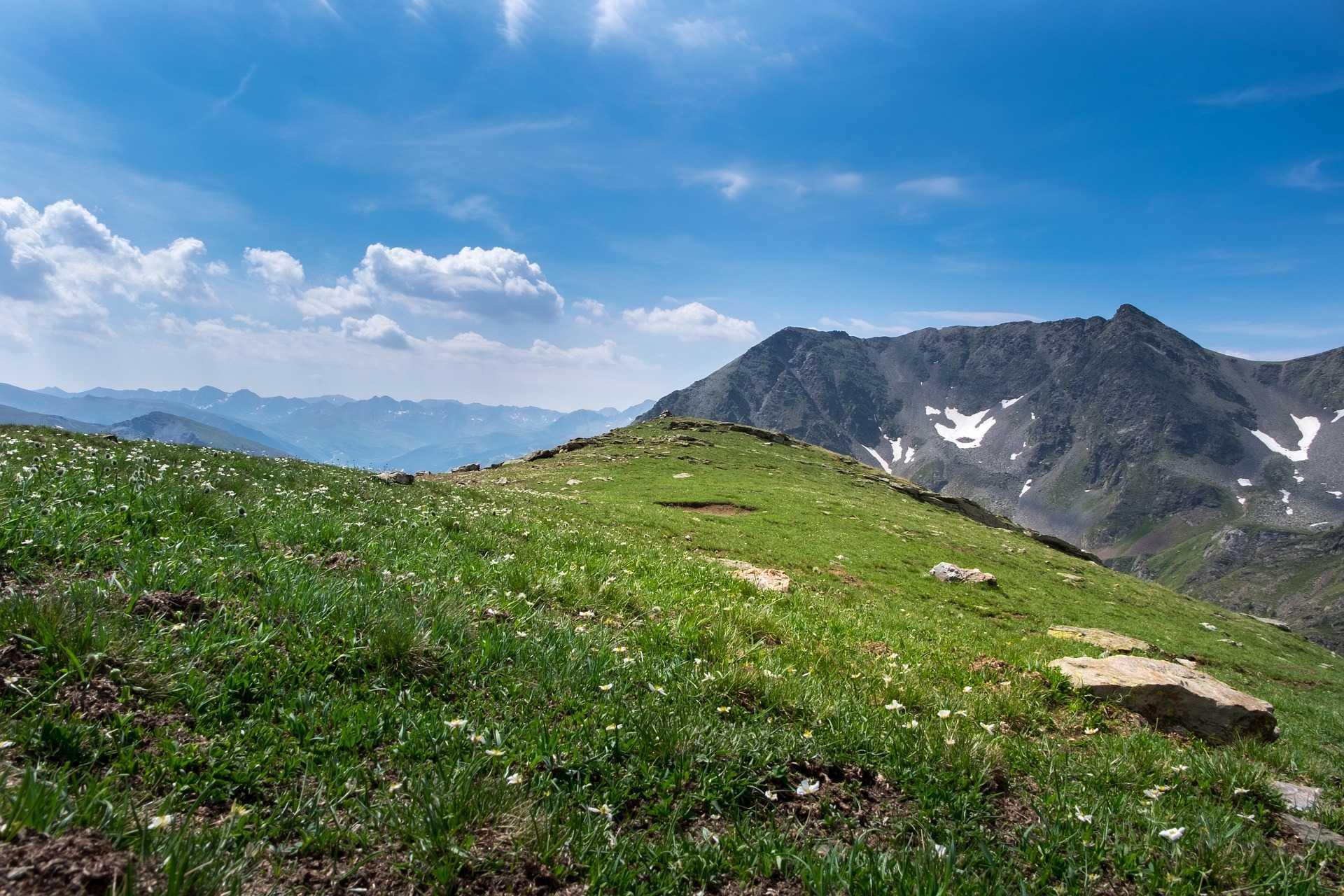 Plaine verte pleine de fleur deriière les montagnes peu enneigées