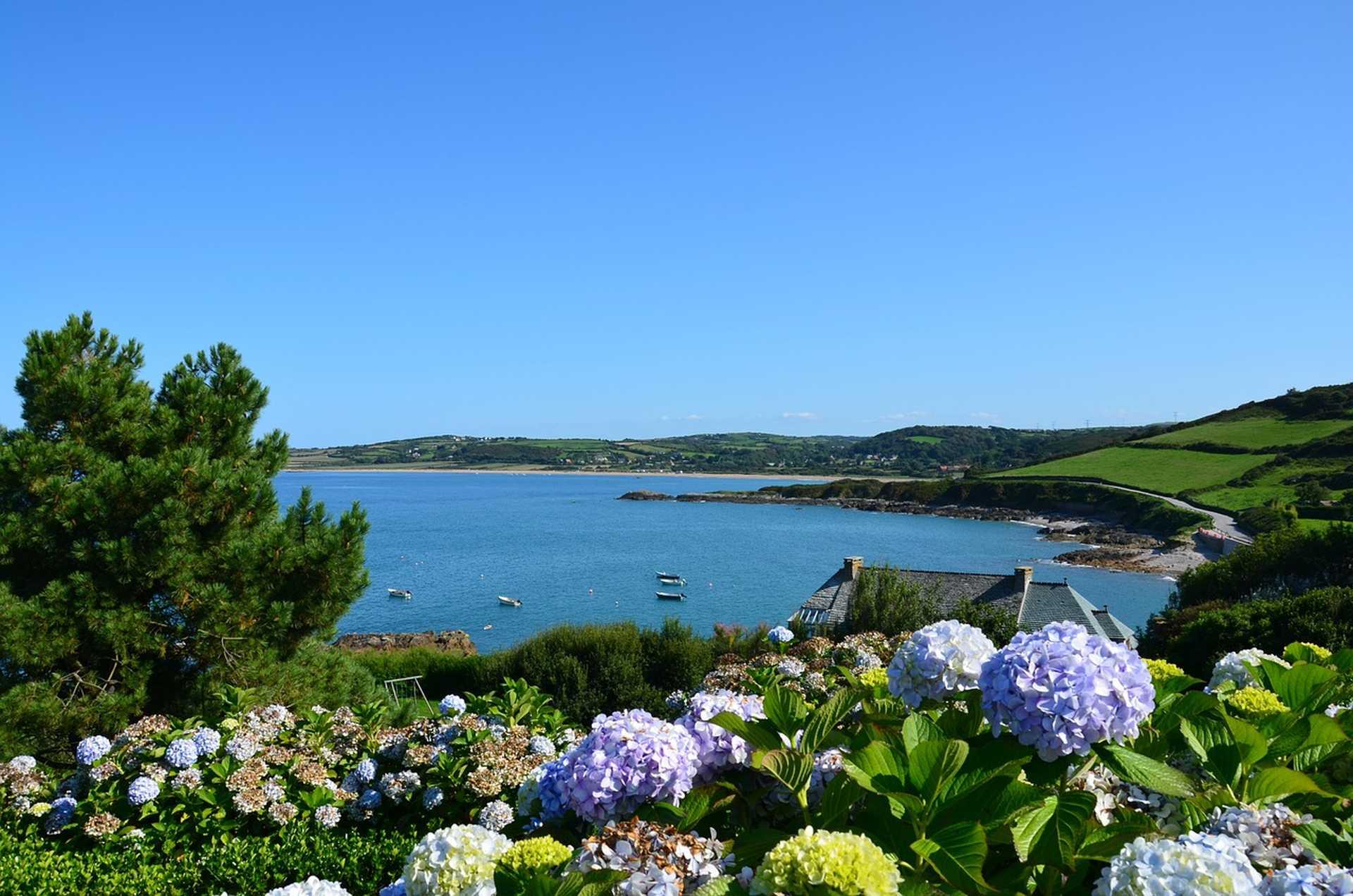 Plage et magnolias dans le Cotentin