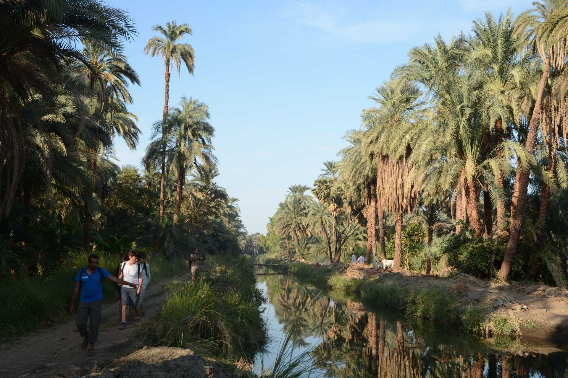 Rando sur les rives du Nil avec guide