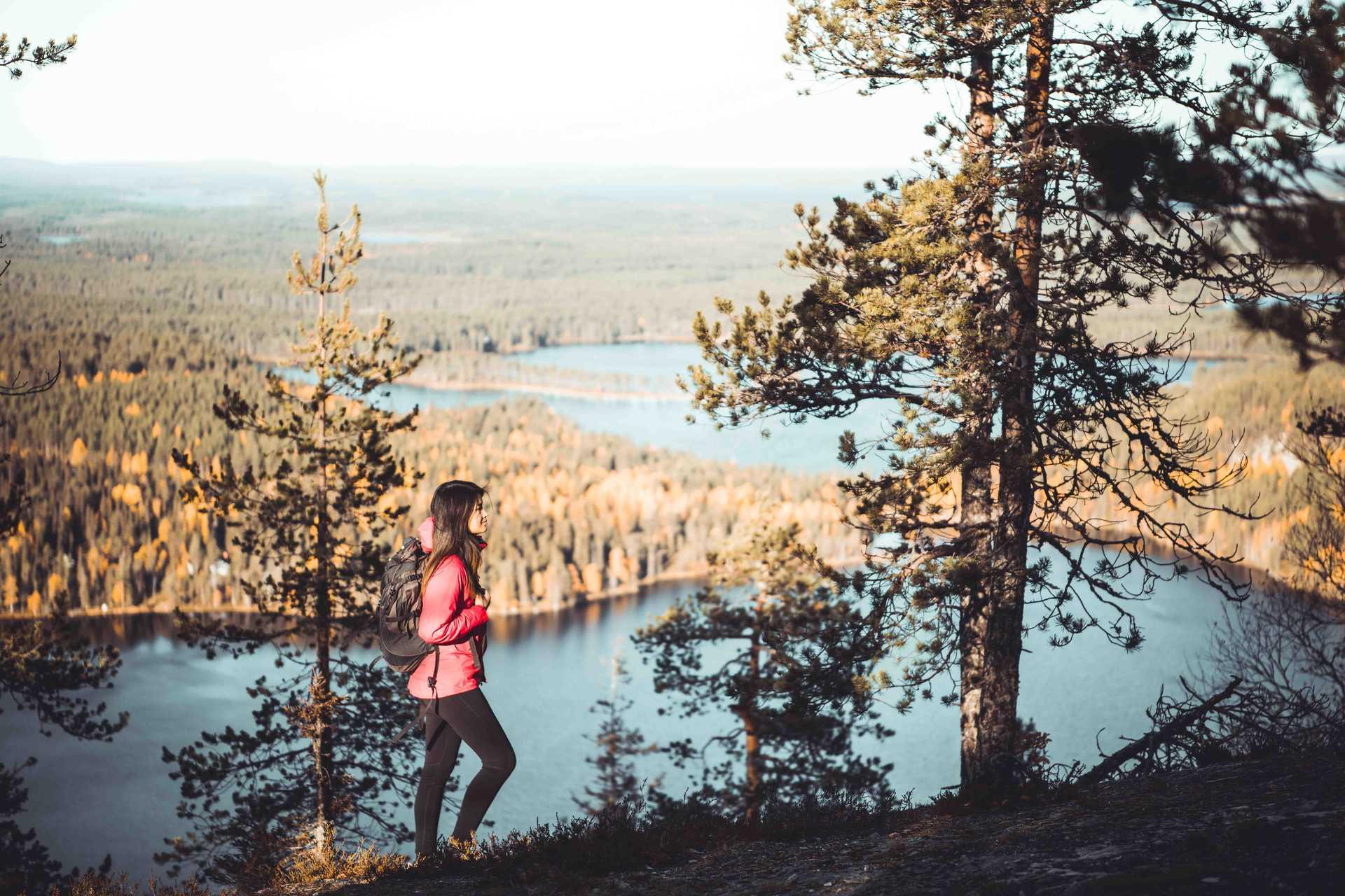 oulanka finlande parc randonnée