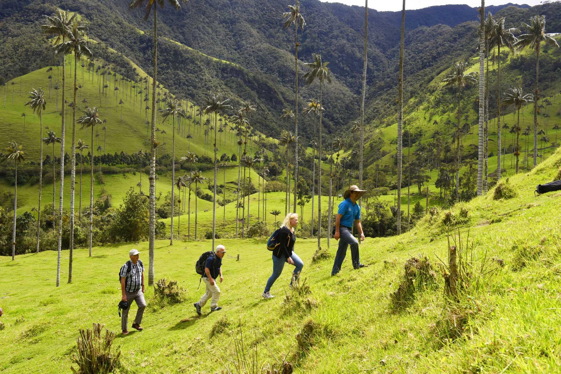 Randonnée colombienne