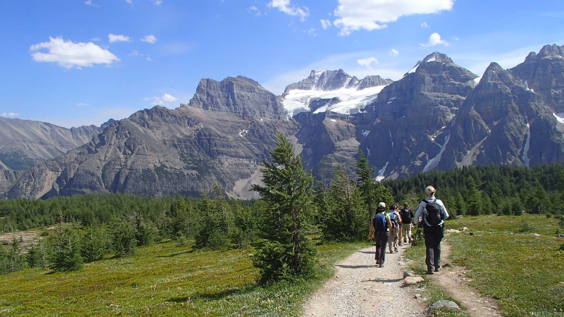 Randonnée jusqu'au col Sentinel, rocheuses canadiennes