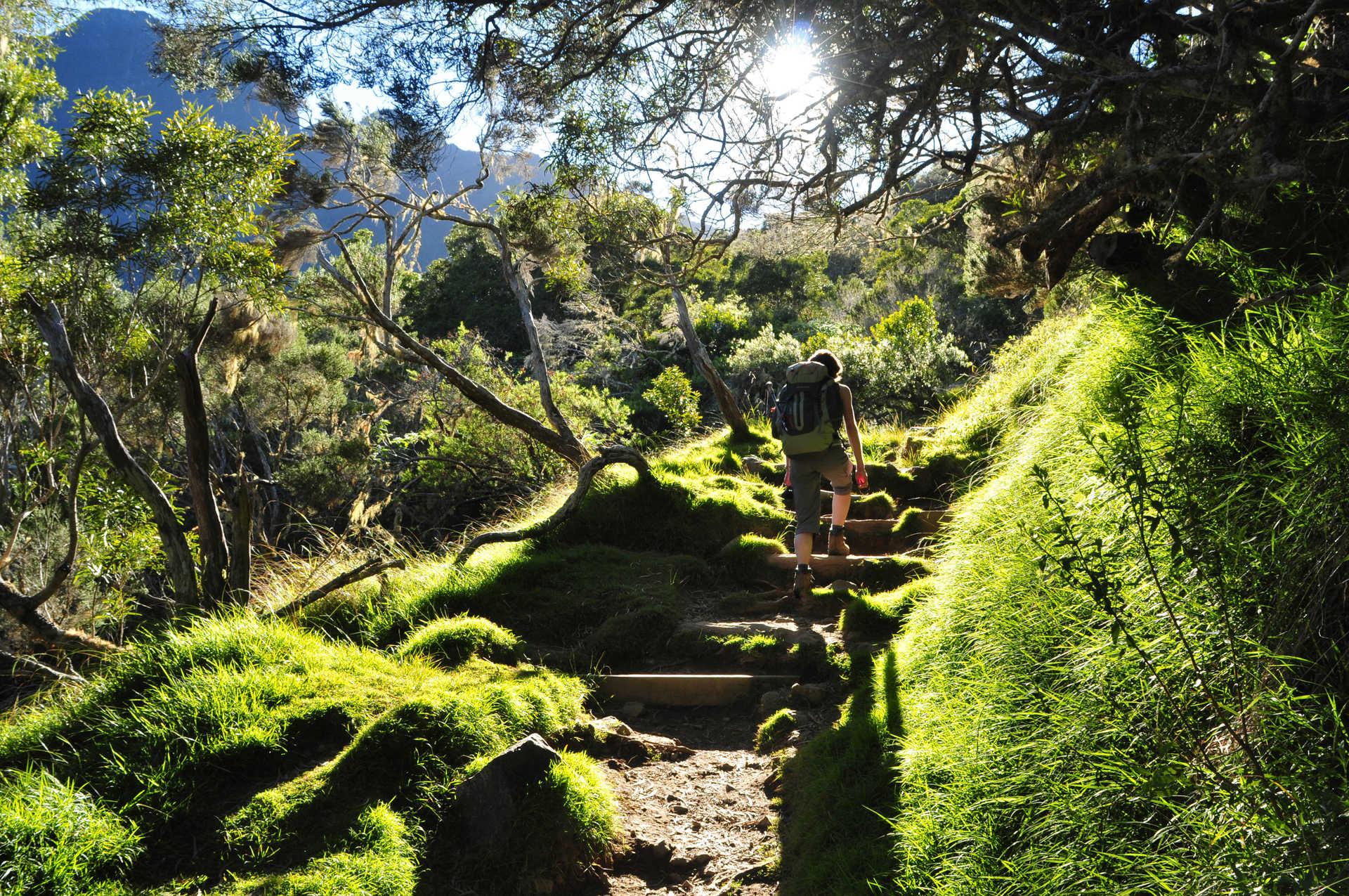 Randonnée La Nouvelle, Hellbourg, La Réunion