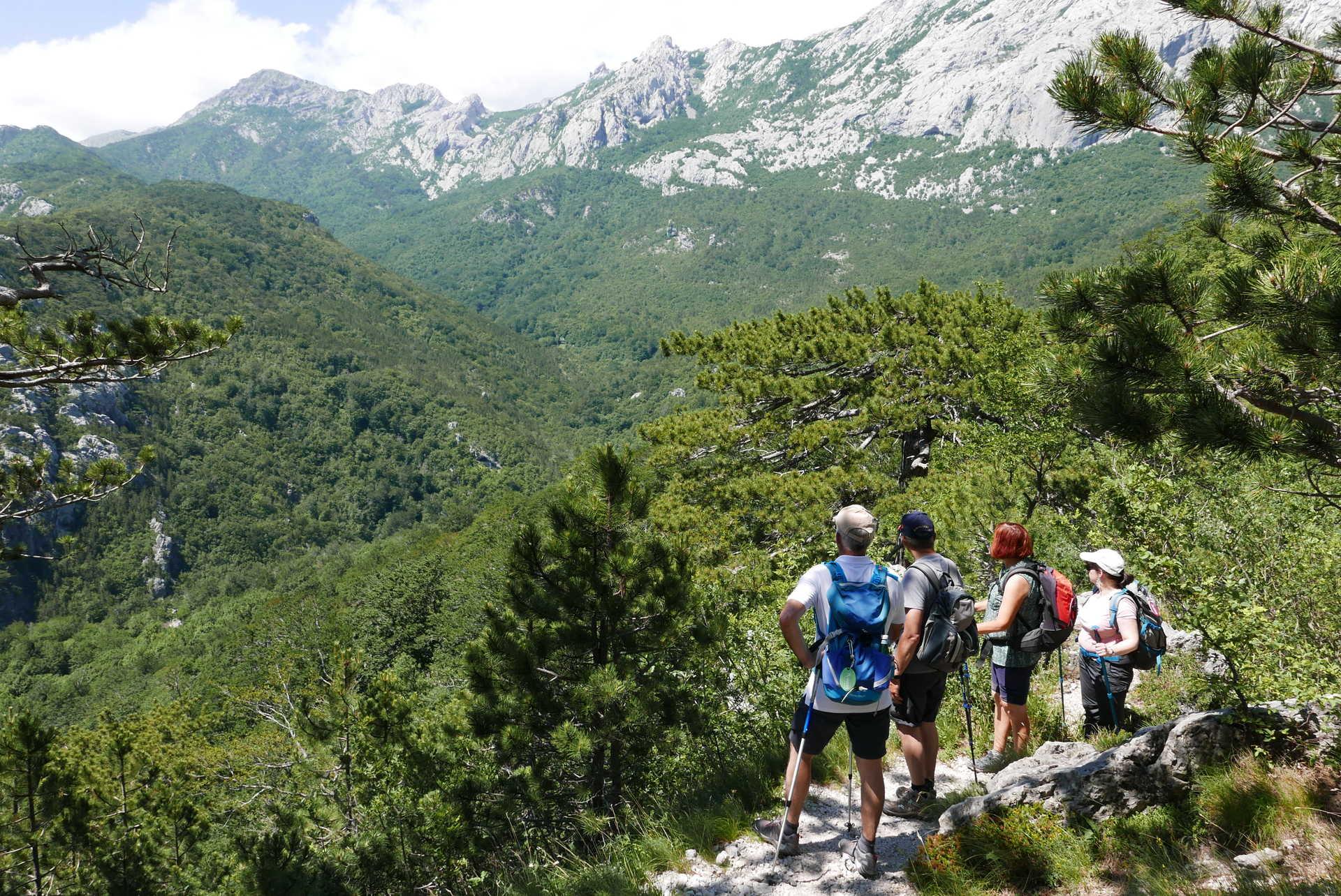 Randonneurs dans le parc national de Plitvice en Croatie