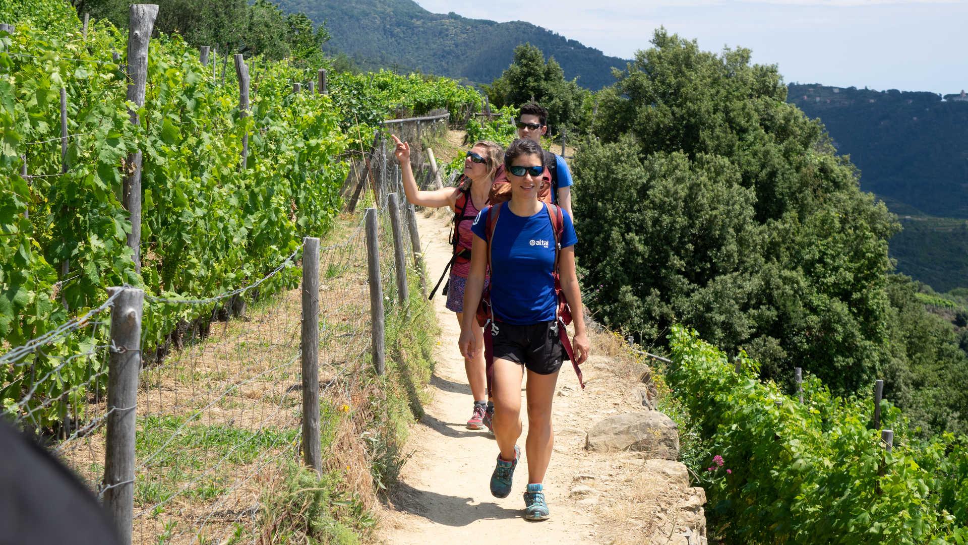 Randonneurs et guide sur un sentier des Cinque Terre