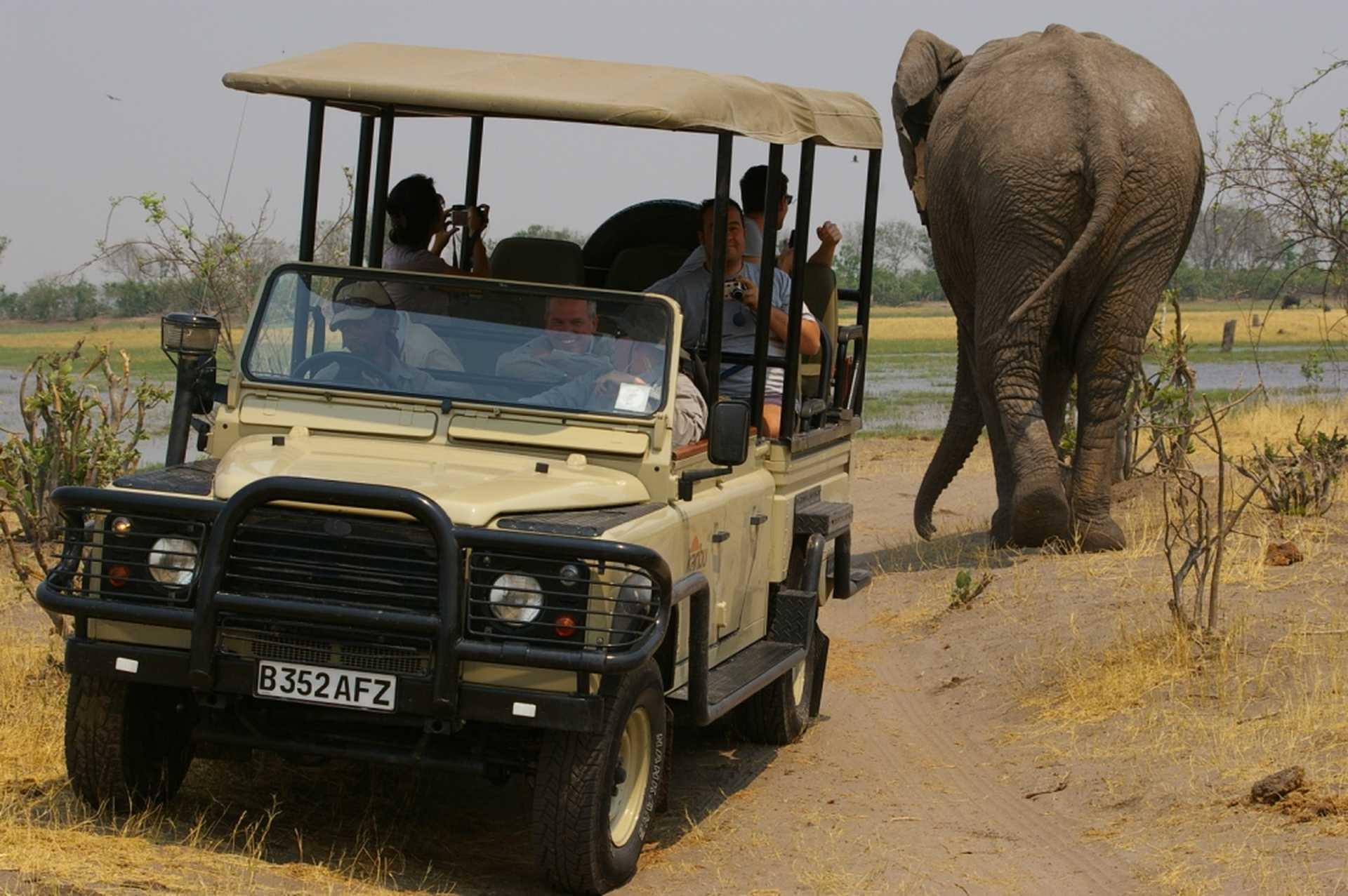 Safari en 4x4 dans le parc national de Moremi