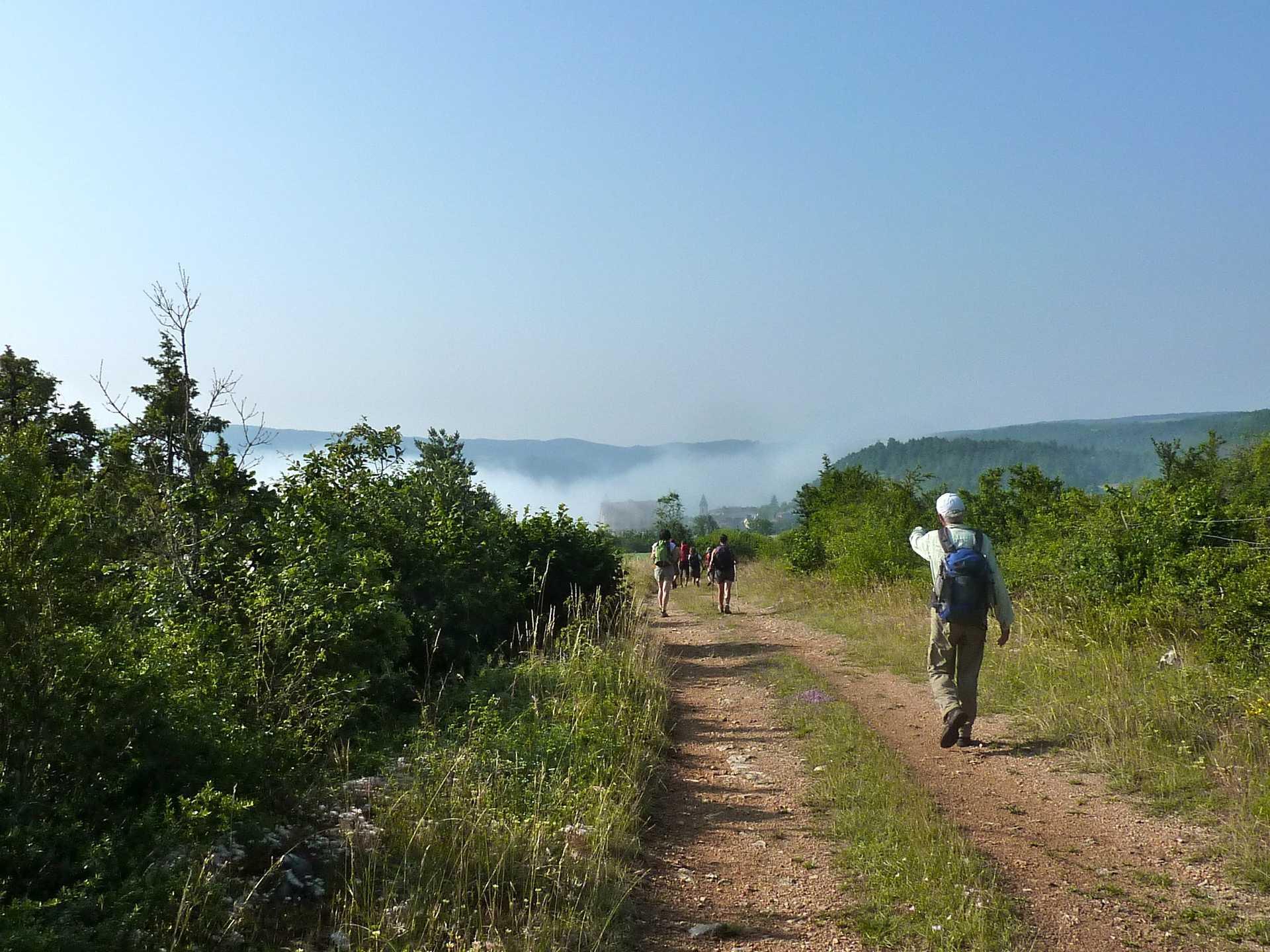 randonnée, massif central, aubrac, chemin saint guilem