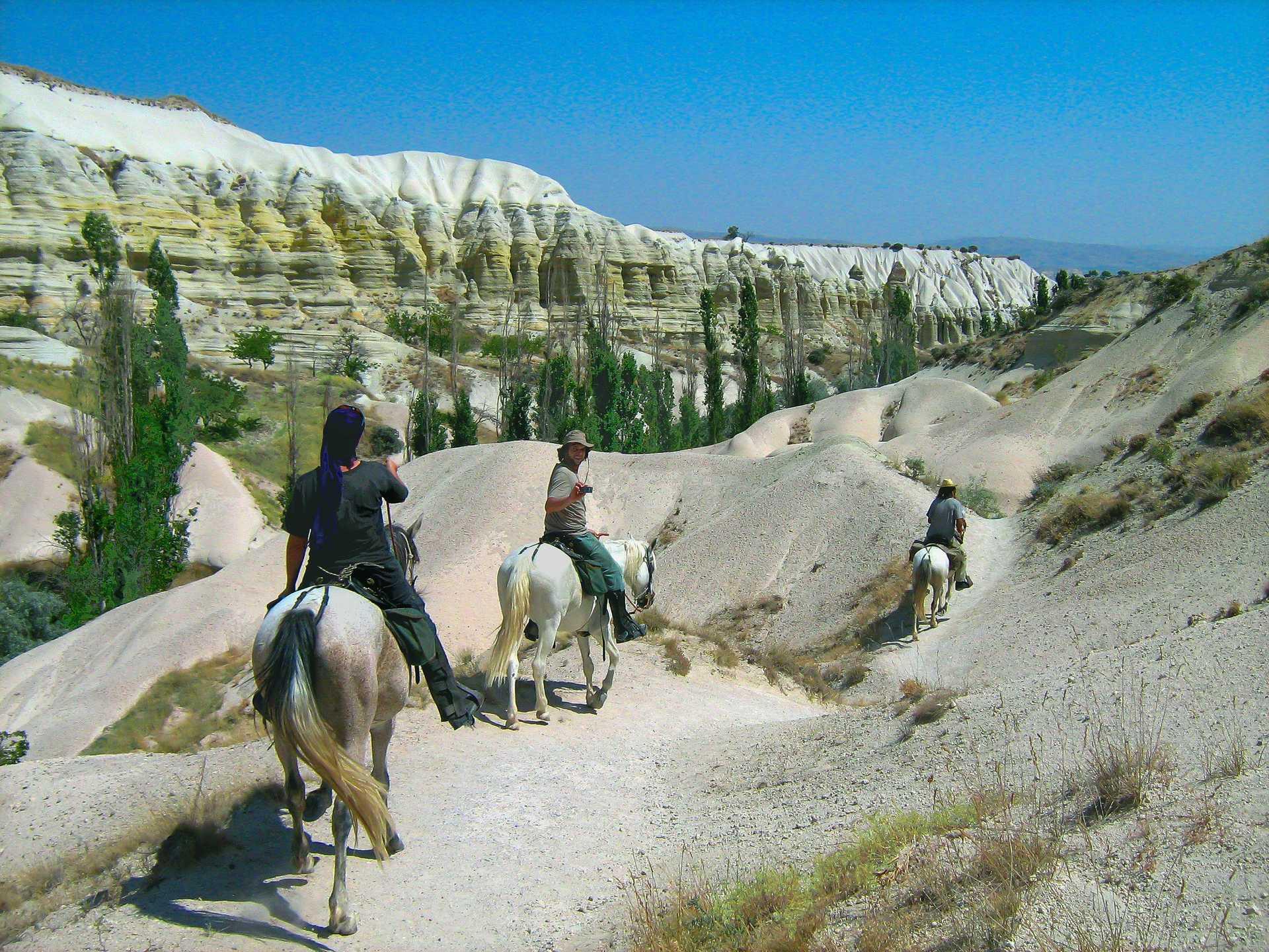 Vallée blanche à cheval