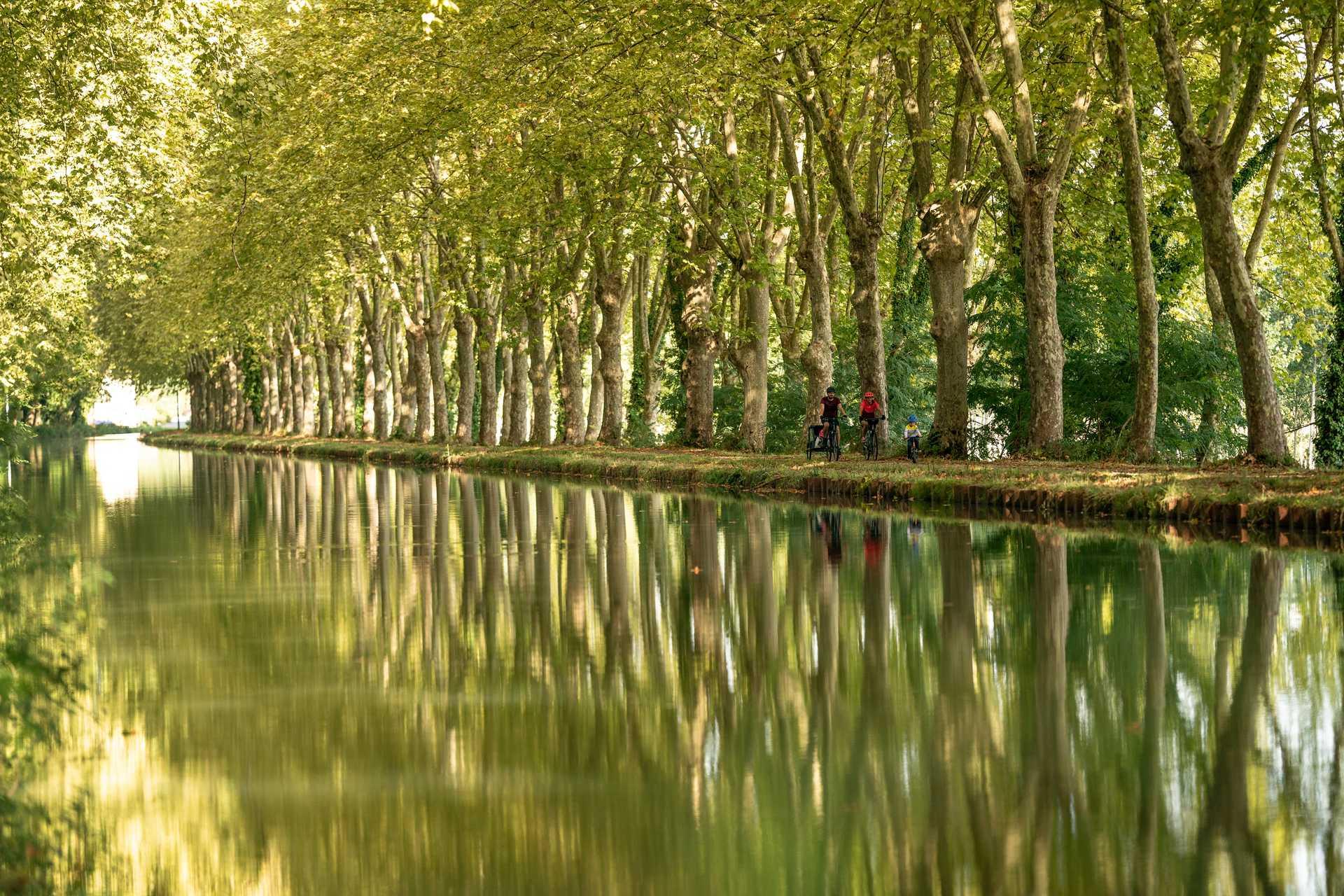 Vélo au bord du canal du Midi