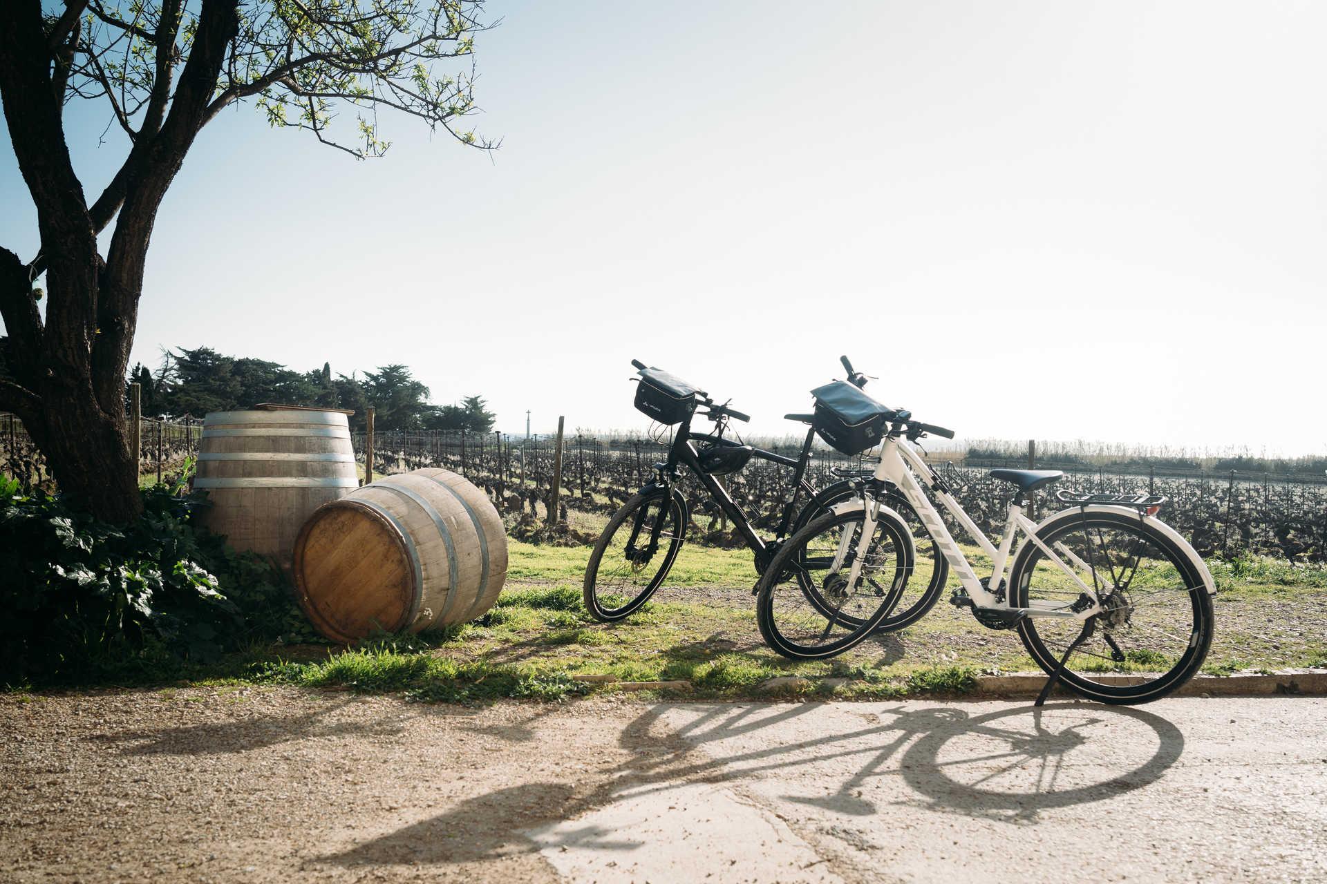 Vélo dans vignes
