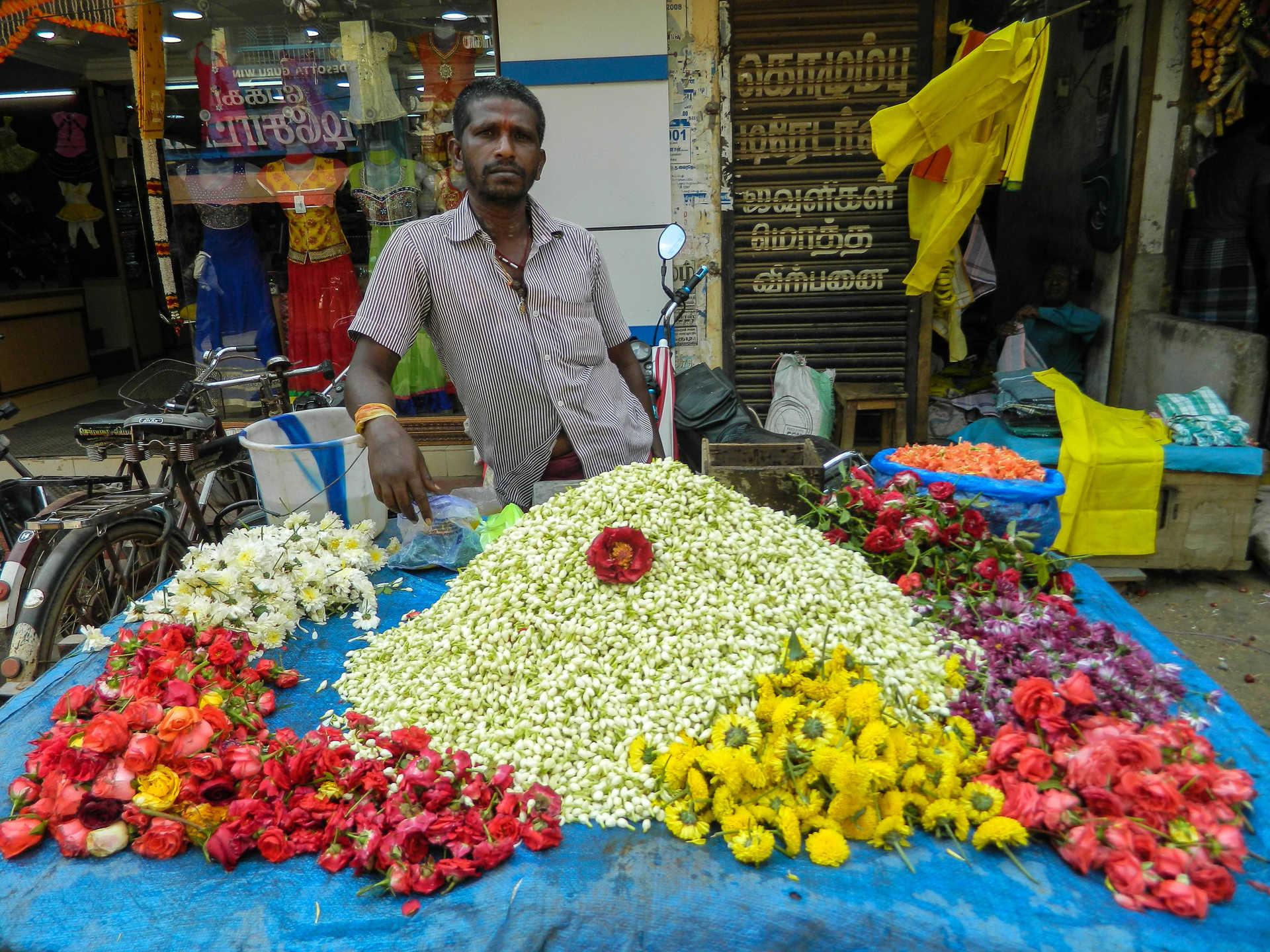 Vendeur de fleurs Inde du sud