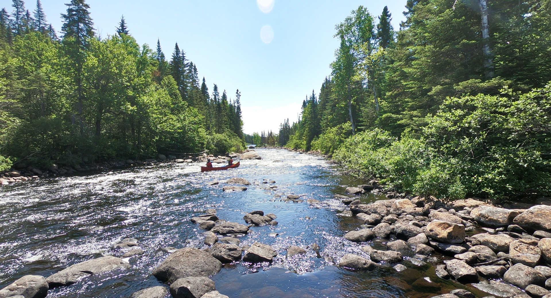 Canoë sur la rivière Batiscan au Québec