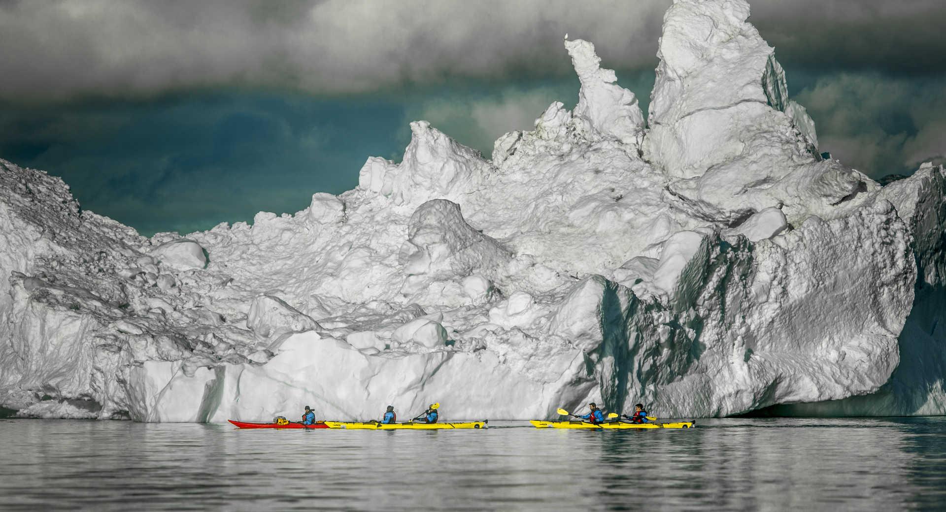kayak en arctique devant les icebergs