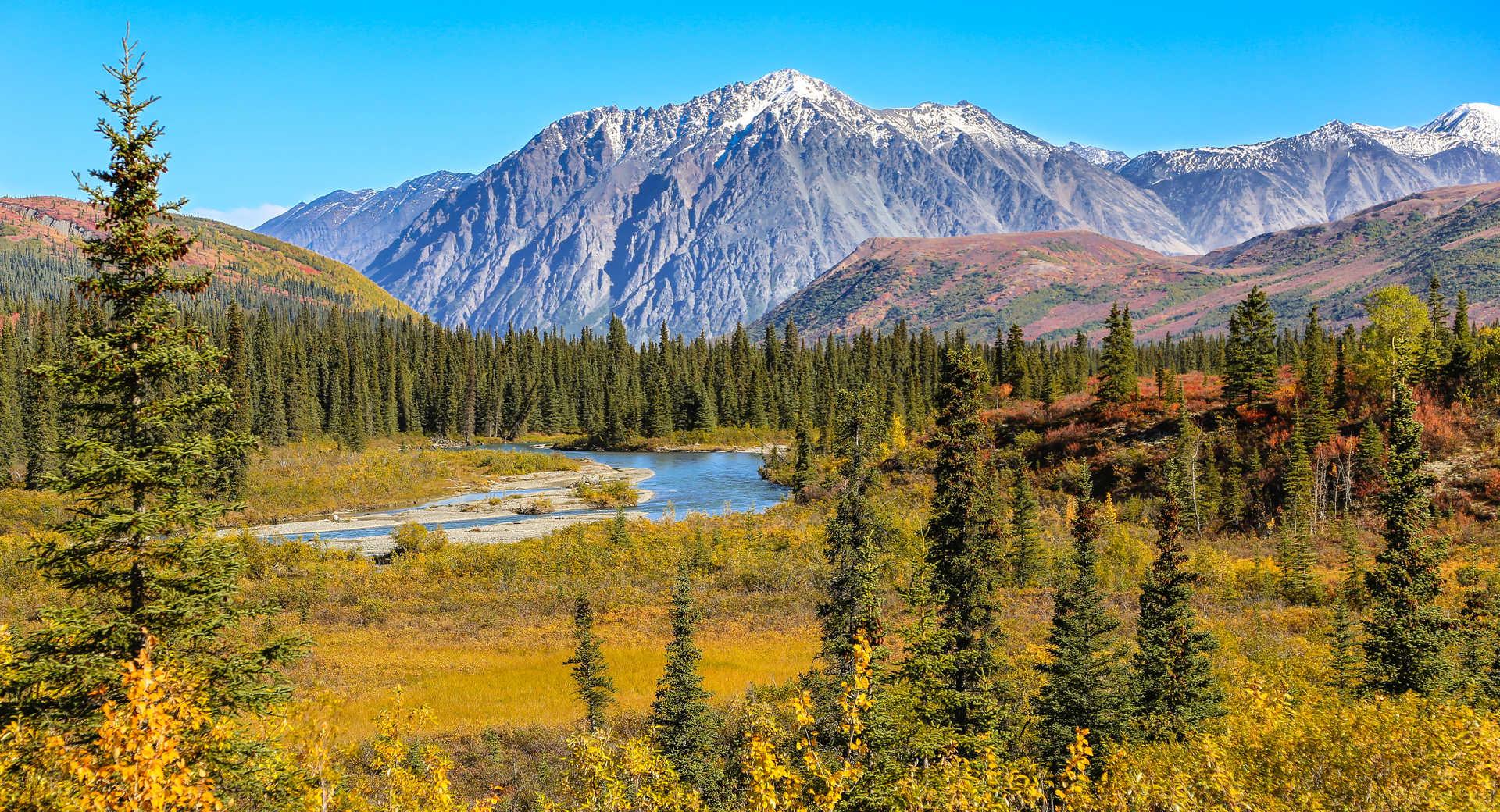 Voyage l'été en Alaska