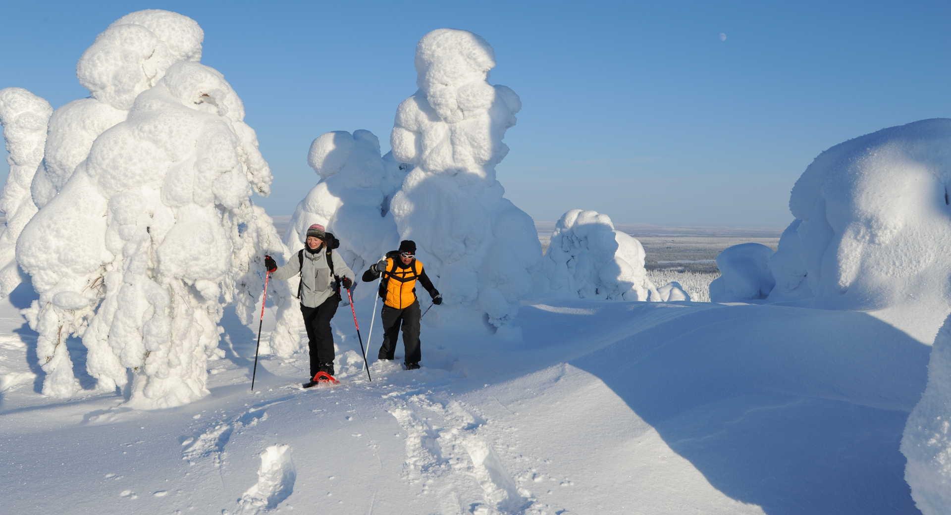 Voyage raquettes en Laponie