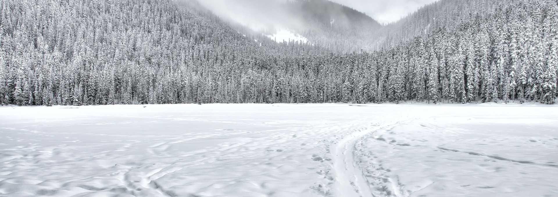 Nature québequoise en hiver