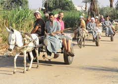 Balade à charette en village