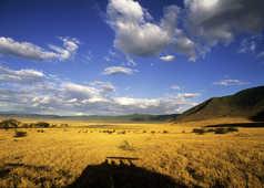 Couleurs de fin de journée dans le cratère du Ngorongoro