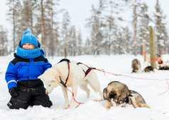 Enfant dans la neige avec un Husky