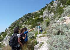 Explications de la guide en randonnée à Mattinata