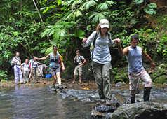 trek dans le parc national Corcovado