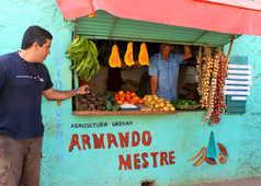 Vendeur à Trinidad