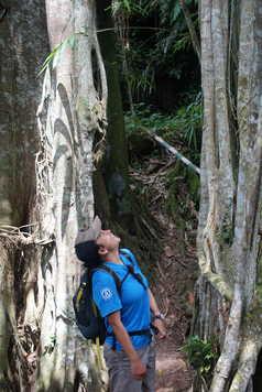 Randonnée dans la region de Bangli, Bali, Indonésie