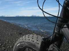 Excursion en fatbike au Spitzberg