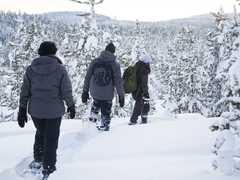Randonnée en Raquettes vers le lac Inari et Nellim