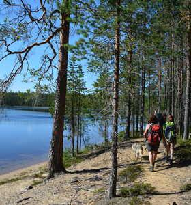 Randonnée en Finlande
