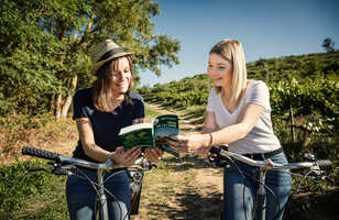 Cyclistes consultant un guide dans les vignobles