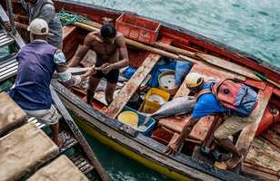 Pécheurs au Cap Vert
