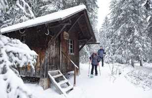 Randonnée en raquettes dans les Alpes