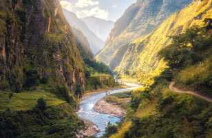 Vallée verte au pied de l'Himalaya