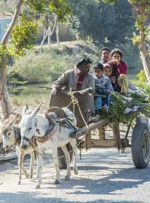 Famille d'égyptiens en charrette avec des ânes