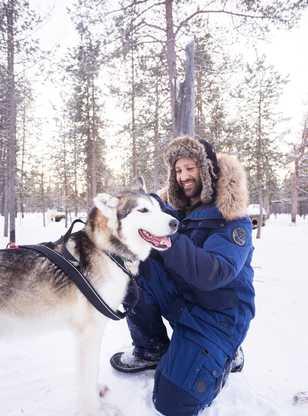 Préparation des huskies pour le chien de traîneau