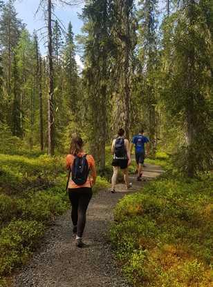 Randonnée dans le Parc National de Hossa en Finlande