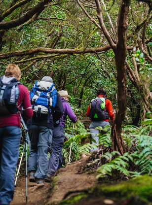 Canaries, Tenerife, La Gomera, la Palma, parc rural Anaga, randonnée