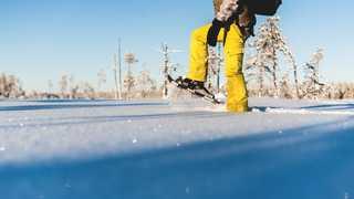 Activité raquettes en Laponie Suédoise