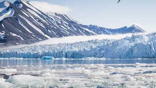 Monacobreen, glacier, Sptizberg, Arctique