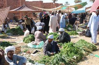 marché de Daraw