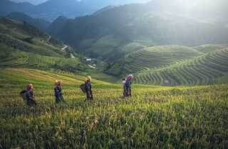 Nord vietnam par Sasin Tipchai