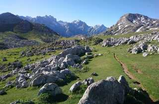 Sentier entre des étendues d'herbes vertes les sommets des Picos des Europa derrière