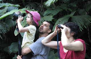 Voyageurs observant aux jumelles des animaux au Costa Rica