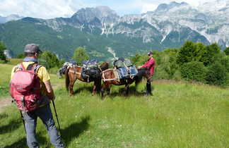 Albanie, les mules portent les sacs