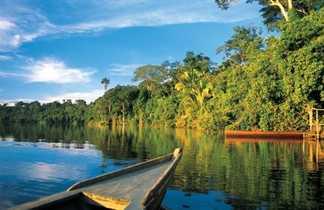 amazonie rio madre de dios