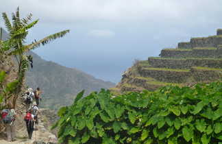 Ambiance tropicale sur Santo Antao