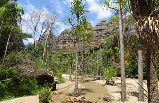Ambiances des vallées du Parc National de l'Isalo